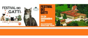 festival dei gatti