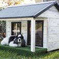 kennels-for-pets-3821854_960_720